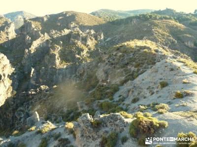 Alpujarras Granadinas [Puente de Reyes] consejos para hacer senderismo singles en madrid la vall d a